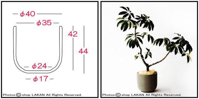 スタウト ANSU4044 セメント植木鉢