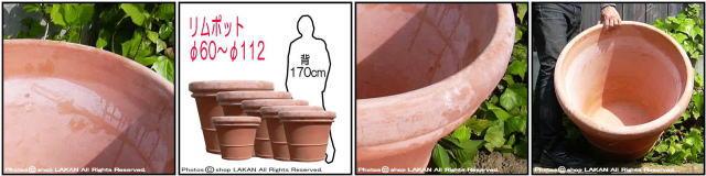 ベノッチ 高品質 テラコッタ鉢 高級 プランター ガーデニング リムポット 輸入テラコッタ植木鉢 ベーシックデザイン