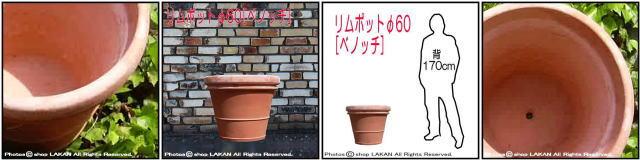 プランター ガーデニング テラコッタ鉢 高級 ベーシックデザイン ベノッチ 高品質 リムポット 輸入テラコッタ植木鉢
