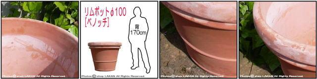 リムポット テラコッタ鉢 高級 ガーデニング 輸入テラコッタ植木鉢