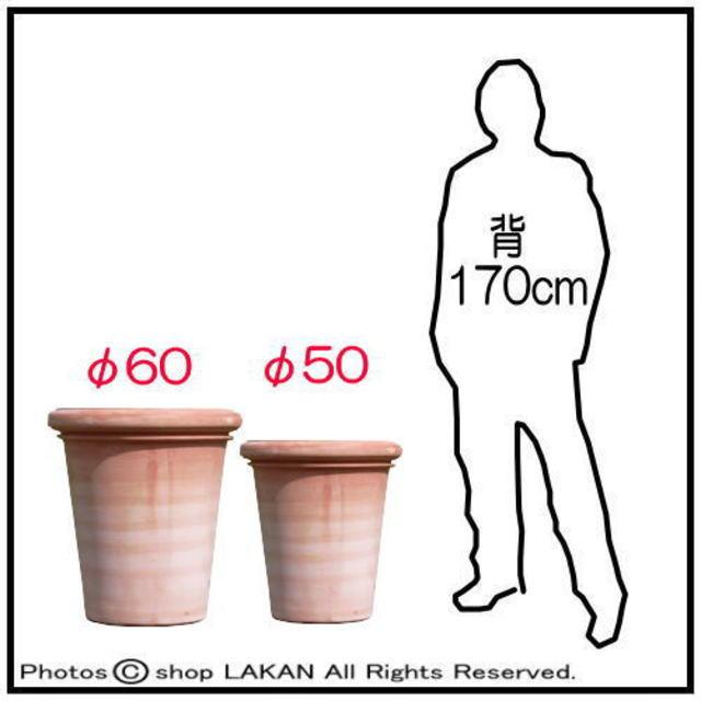 ベノッチ 高品質 テラコッタ製 植木鉢