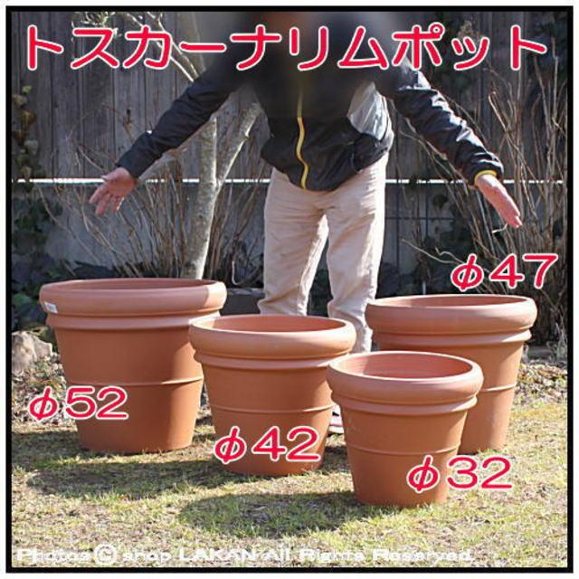 素焼き陶器鉢 輸入植木鉢 デローマ社 大型テラコッタ鉢 トスカーナ リムポット37