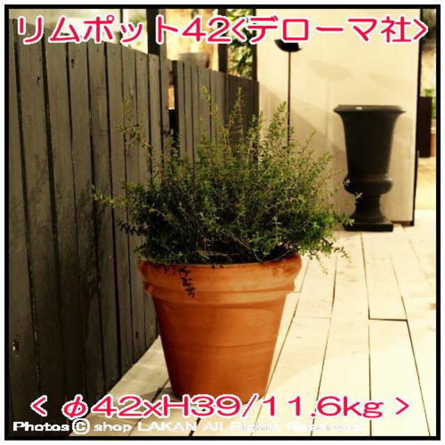 大型テラコッタ鉢 素焼き陶器鉢 輸入植木鉢 トスカーナ リムポット42 デローマ社