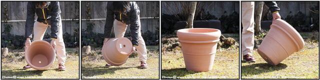 輸入植木鉢 トスカーナ デローマ社 リムポットホワイト42 素焼き陶器鉢 大型テラコッタ鉢