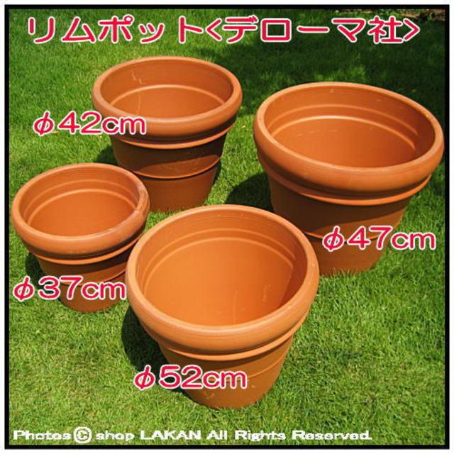 輸入植木鉢 トスカーナ 素焼き陶器鉢 リムポット52 デローマ社 大型テラコッタ鉢