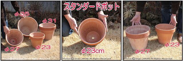 デローマ社 ガーデニング鉢 テラコッタ鉢