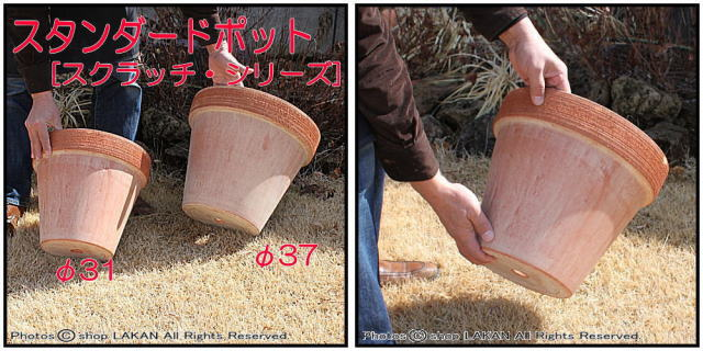デローマ社 スクラッチM 素焼植木鉢