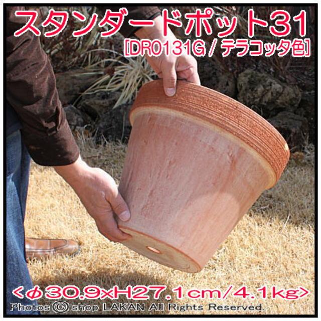 スタンダードポット スクラッチM テラコッタ製 植木鉢
