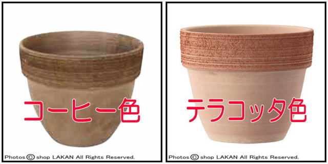 スクラッチ テラコッタ製 植木鉢 ジオットポット