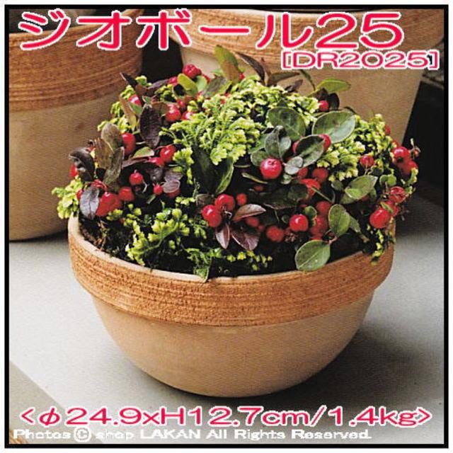 ジオボウル スクラッチM テラコッタ製 植木鉢