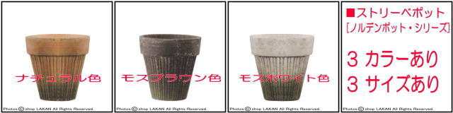ストリーベポット テラコッタ製 ノルデンポット 苔 ガーデン 小ぶり おしゃれ鉢 ベトナム製 エッシュバッハ