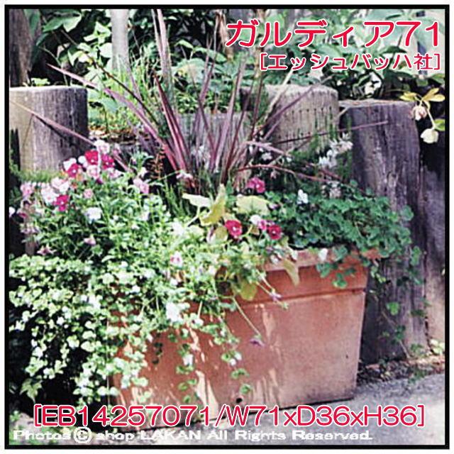 横長テラコッタ 素焼き植木鉢 無地柄 ガルデア テラマーナ 人気 輸入鉢