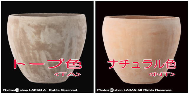 ベトナム 植木鉢 エッシュバッハ社 ガーデニング鉢