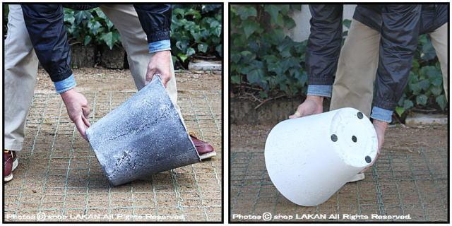 軽量 コンクリート フォリオ 鉢
