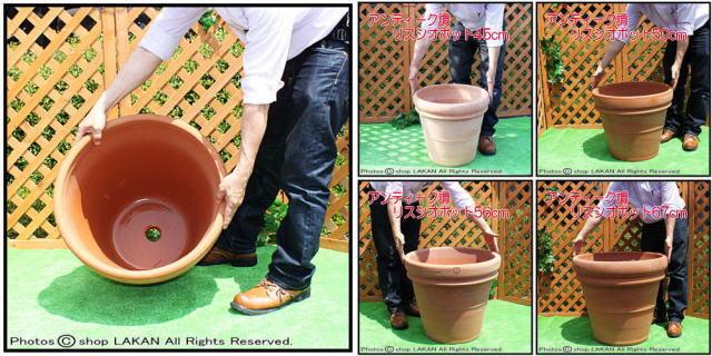 テラコッタ植木鉢 プレーンダブルリムポット ベイスリー・トレビジャーネ社 無地 耐寒仕様 不動人気プランター